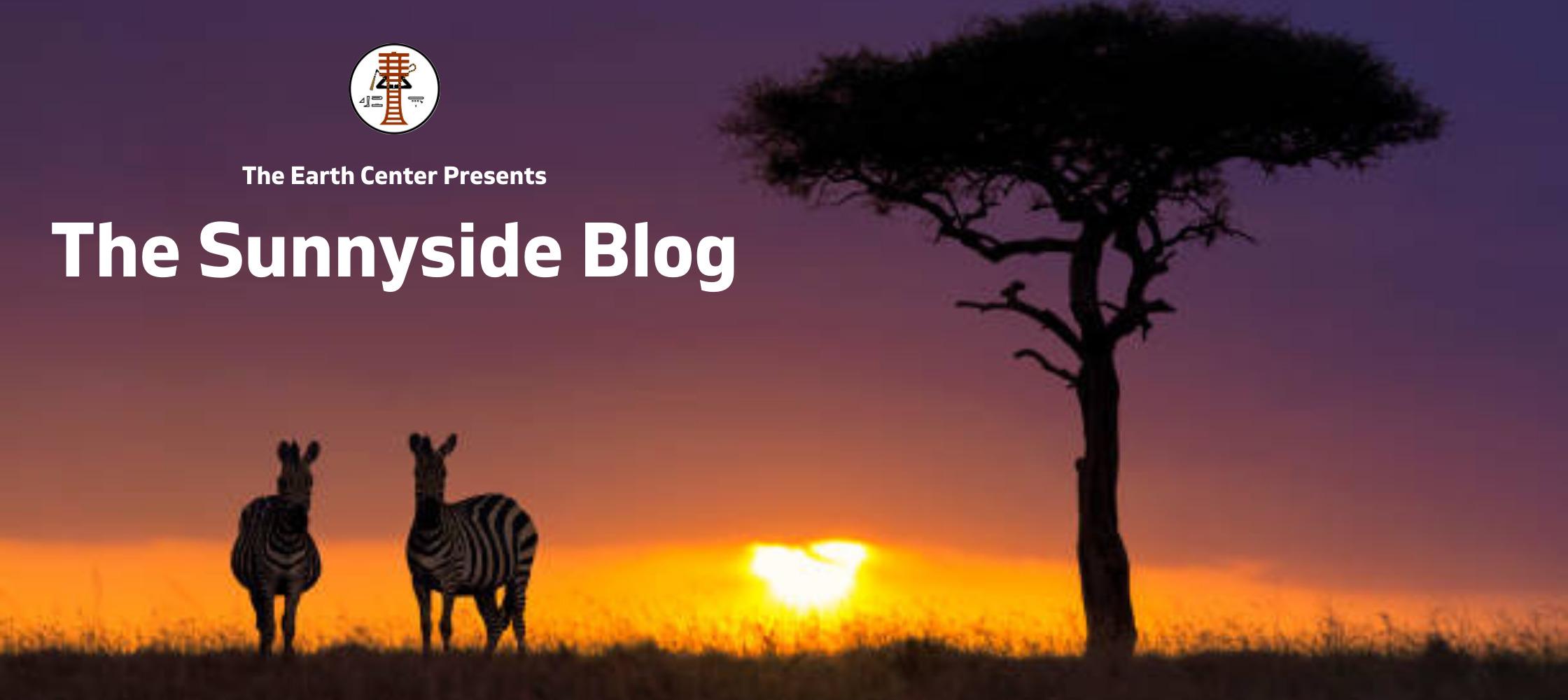The Sunnyside Blog